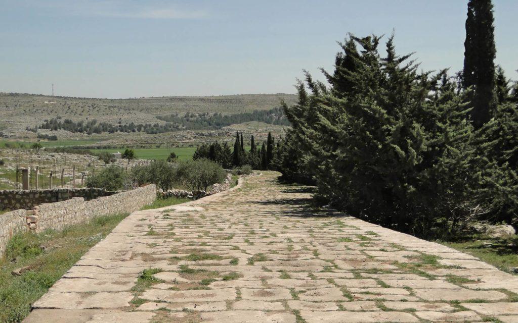 Древняя римская дорога, соединявшая Антиохию с сирийским городом Халкида