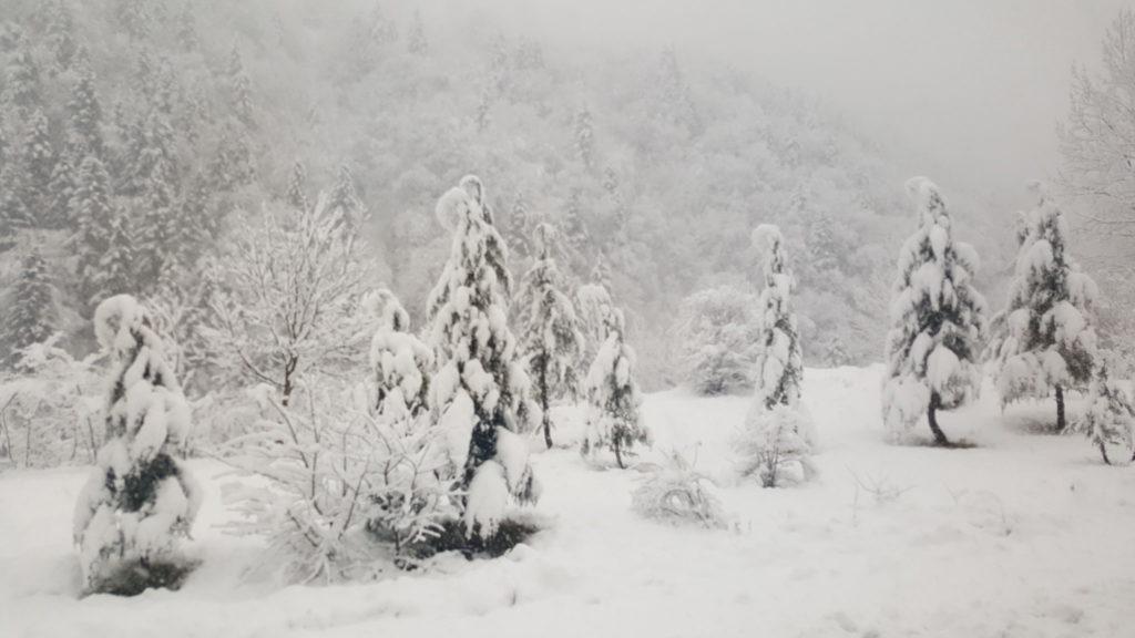 Зима в горах на востоке Турции - самая настоящая