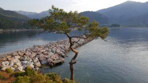 Экинджик - небольшой кусочек рая на Эгейском побережье Турции